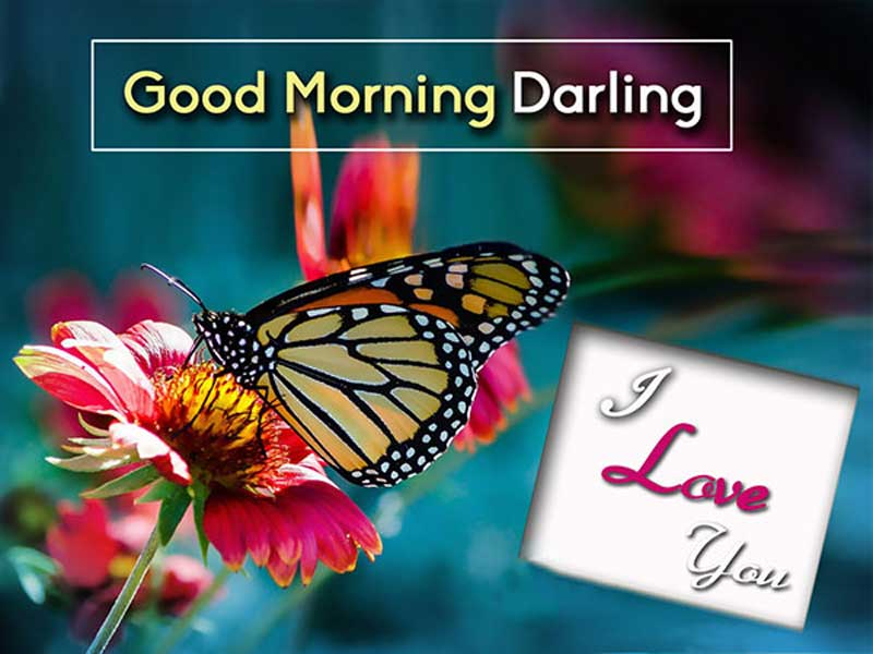 Romantic-good-morning-wishes-for-wife