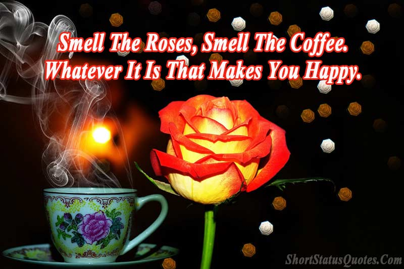 Best-rose-day-status-with-image
