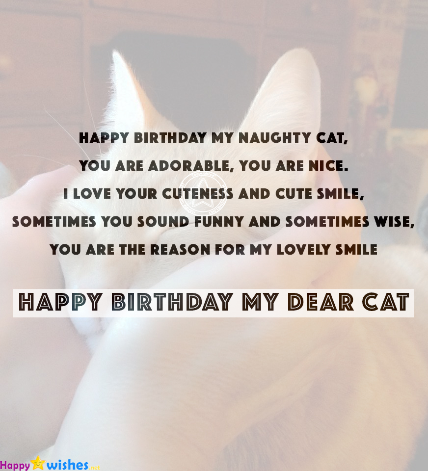 20 Happy Birthday Wishes For Cats Quotes Images Memes Ultra Wishes