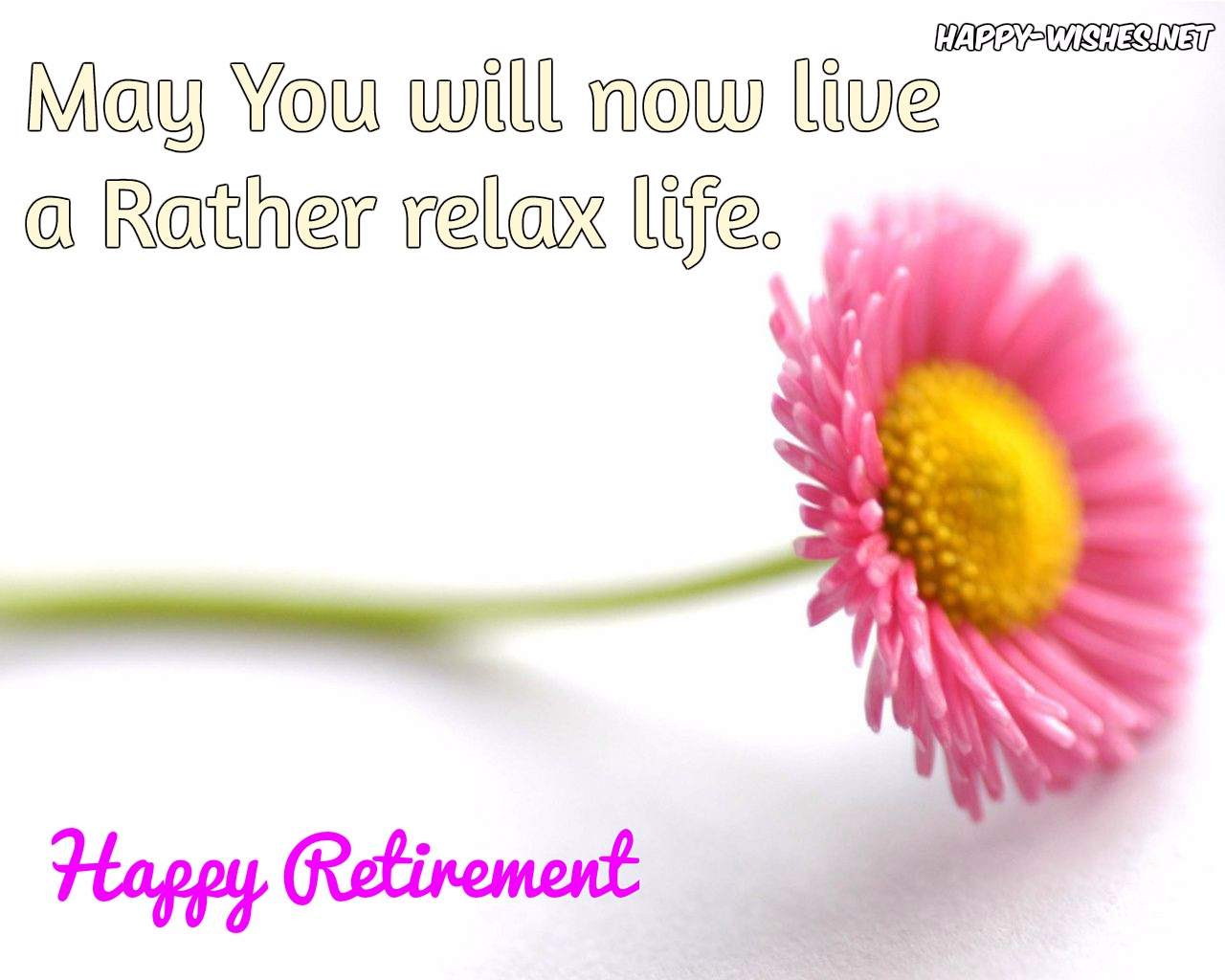 100+ Best Retirement wishes and quotes