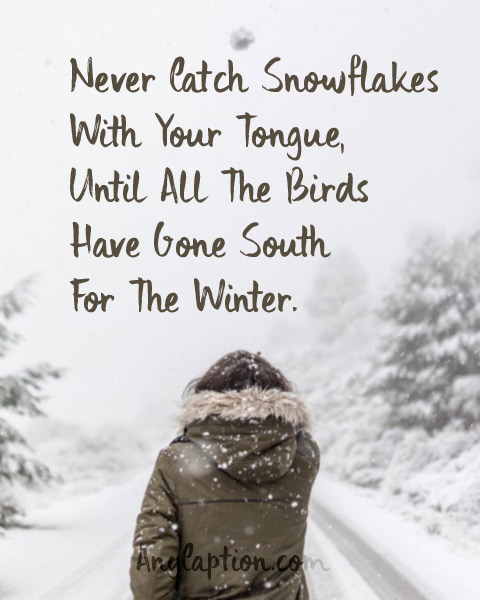 Funny-Winter-Captions-Quotes-Images