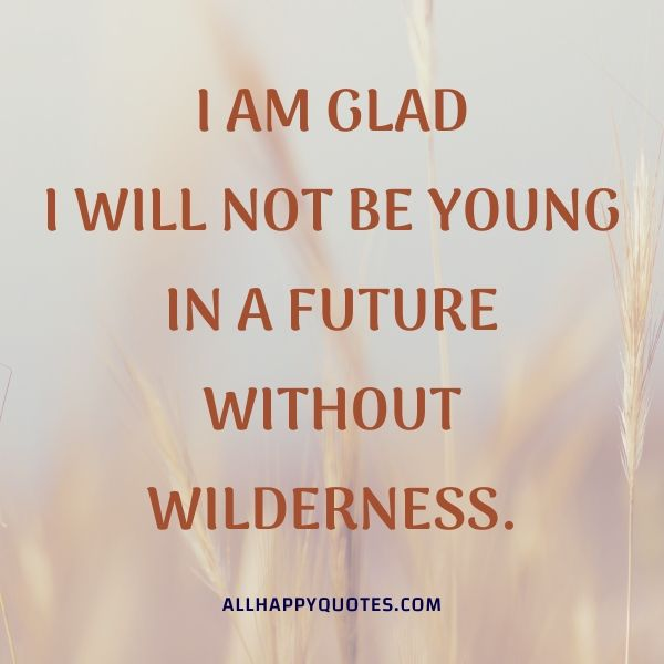 i am glad i will not be young
