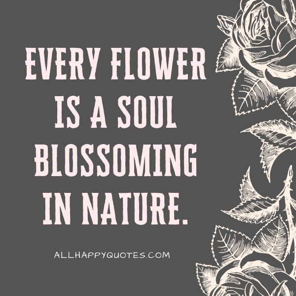 is a soul blossoming