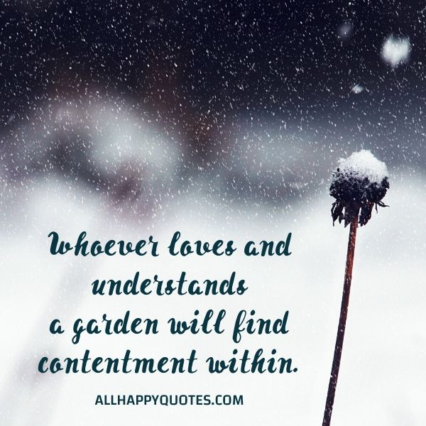 nature quotes download