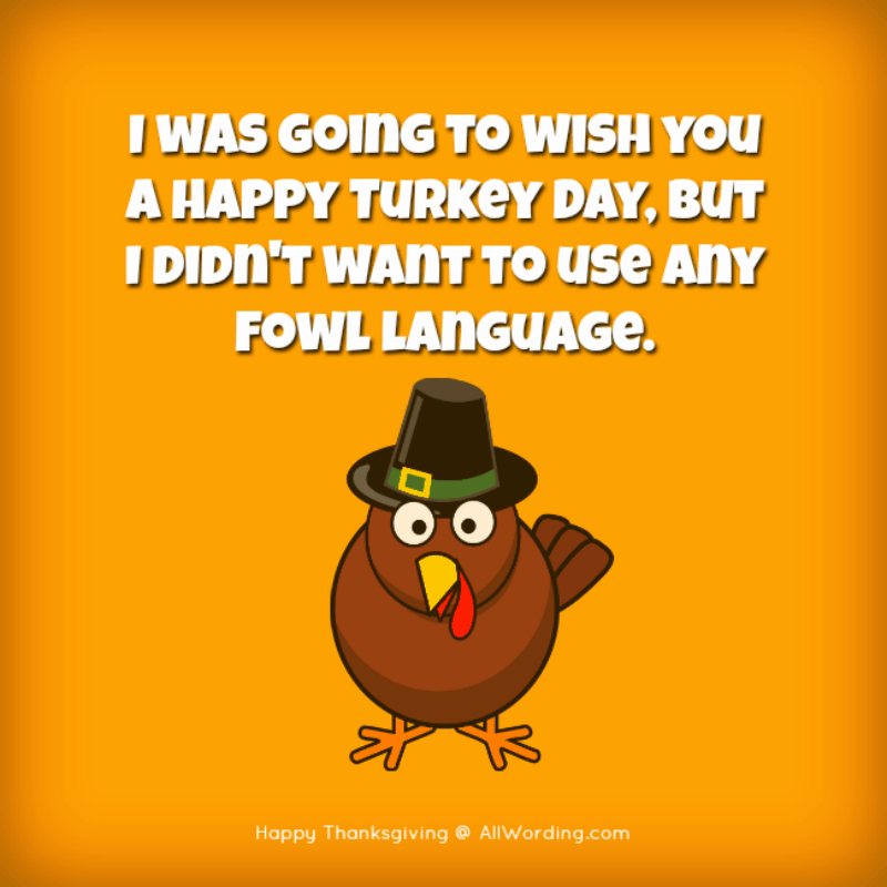 I was going to wish you a Happy Turkey Day, but I didn't want to use any fowl language.