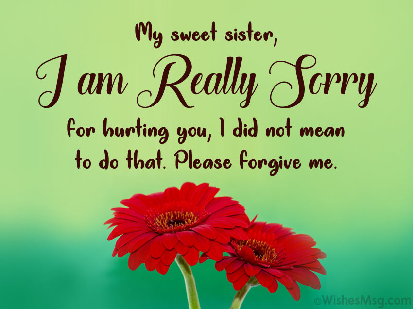 Sorry messages for sister