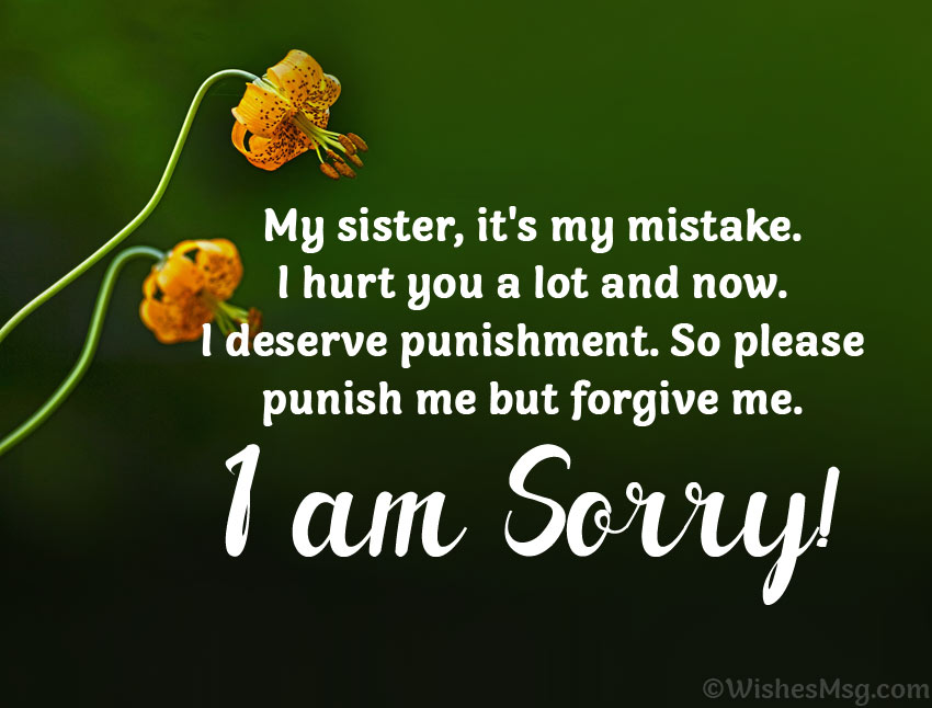 Apology quotes to sister